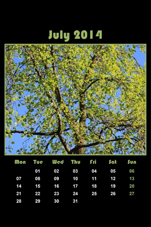 Colorful english calendar for july 2014 in black background, tree and green leaves photo