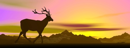 Shadow of an elk standing looking at mountains by sunset photo
