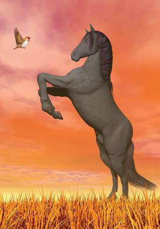 rearing: Rearing horse in front of little monarch butterfly by beautiful orange sunset sky Stock Photo
