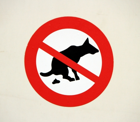 poop: No pooping by dogs sign on a wall Stock Photo