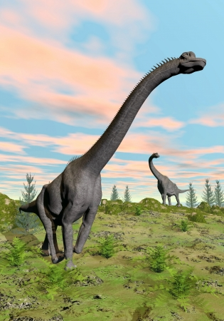 brachiosaurus: Two brachiosaurus dinosaurs in nature with green grass by colorful sunset Stock Photo