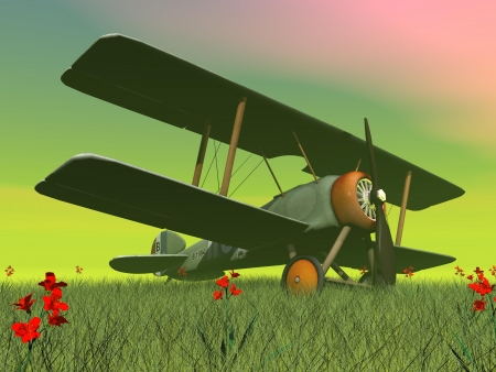 Vintage biplane standing on the green grass with flowers by sunset