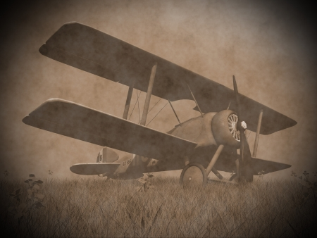 Vintage image of a biplane standing on the grass with flowers photo