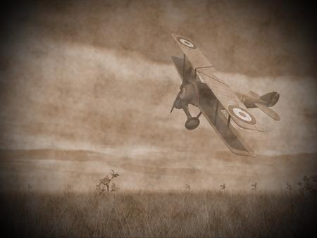 wright: Vintage image of a biplane flying upon the grass with flowers