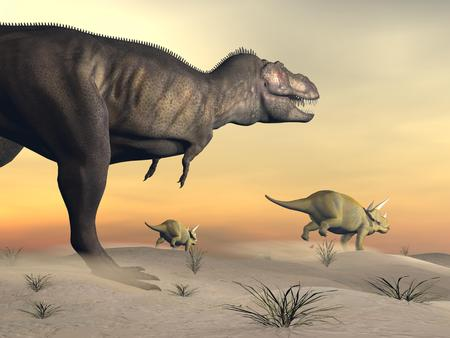escaping: One triceratops escaping from tyrannosaurus dinosaur in desertic landscape by sunset
