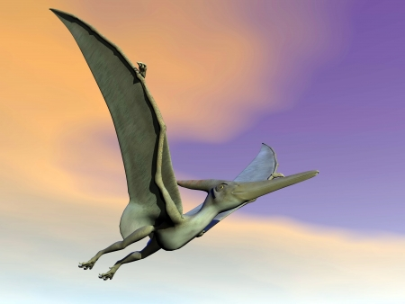 One pteranodon dinosaur flying in colorful sunset sky Banque d'images