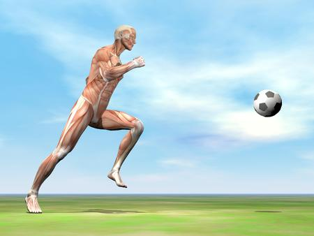 One soccer player or footballer running after balloon on the green grass by beautiful day photo