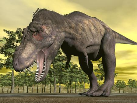 aggressively: One tyrannosaurus dinosaur walking aggressively mouth open in nature with trees by sunset Stock Photo