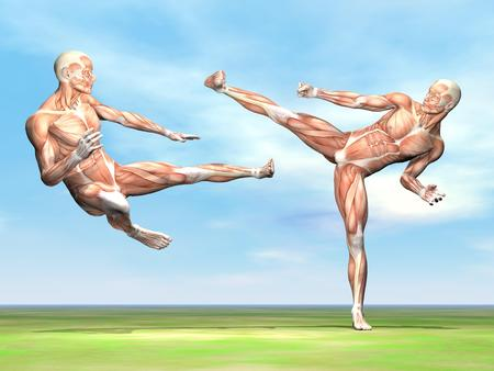 Two male musculatures fighting with martial art on the green grass by beautiful day photo