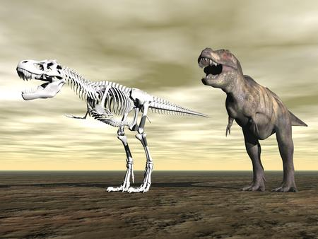 trex: Tyrannosaurus rex next to its skeleton on the ground by cloudy day