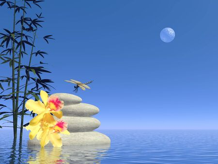 White stones in balance, yellow flowers and dragonfly next to bamboos into water by full moon clear night photo