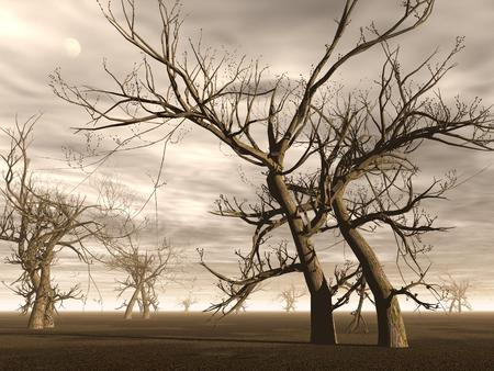 barren land: Many dead trees in the desert by brown cloudy day Stock Photo