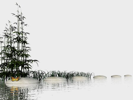 Bamboos into water near stones steps and butterfly in white  photo