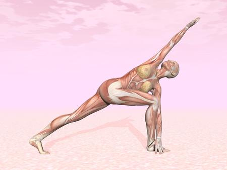 Revolved side angle yoga pose for woman with muscle visible in pink background photo