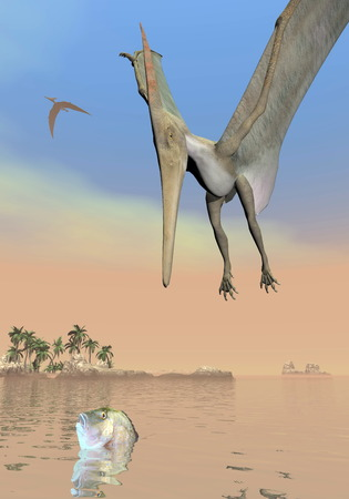 pteranodon: One pteranodon dinosaur fishing while flying upon landscape with hills, palm trees and water in cloudy sunset sky
