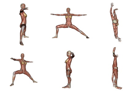 Six different view of warrior yoga pose for woman with muscle visible in white background