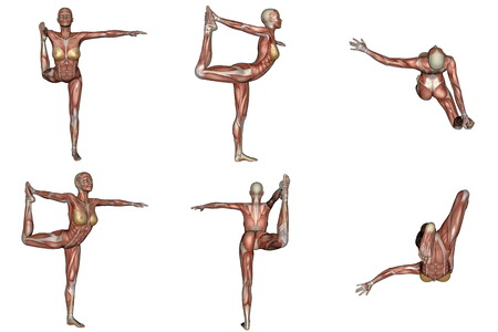 Six different view of dancer yoga pose for woman with muscle visible in white background photo