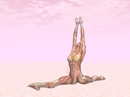 Monkey yoga pose for woman with muscle visible in pink background photo