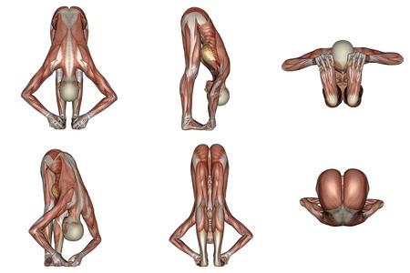 白い背景で目に見える筋肉を持つ女性のための大きなつま先ヨガのポーズの六つの別のビュー