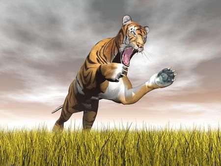 tuft: One tiger jumping while focusing on something upon yellow grass by cloudy brown day Stock Photo