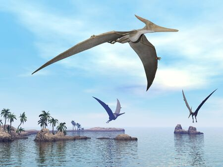 Three pteranodon dinosaurs flying upon landscape with hills, palm trees and water in cloudy sunset sky