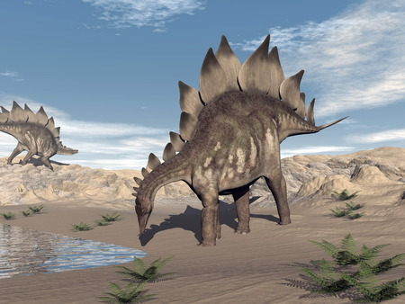 One stegosaurus walking to water and other standing on a hill in the desert by day Stock Photo