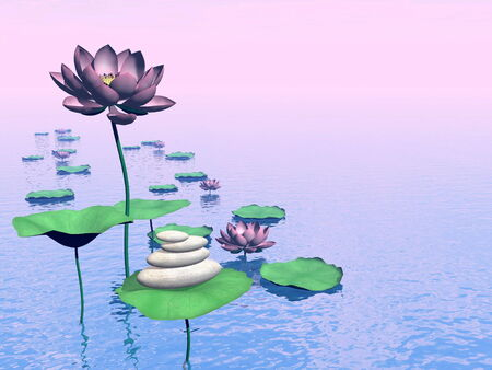 Pink lily flowers and leaves next to white stones upon water by colorful day photo