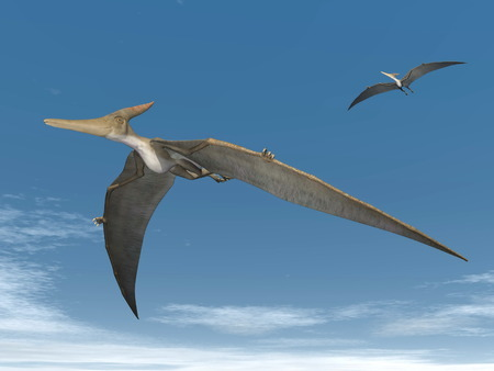 Two pteranodon dinosaurs flying in the sky photo