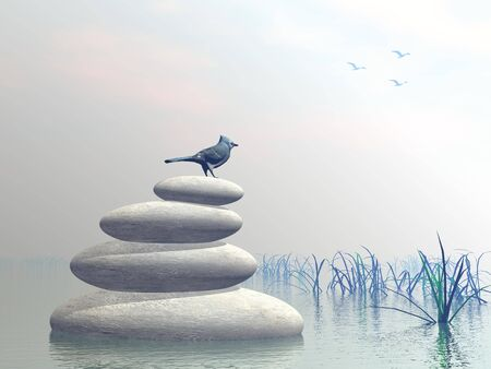 Beautiful blue bird upon stones in water next to grass by clear morning light Stock Photo