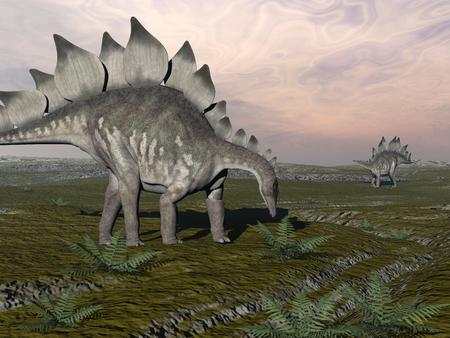 One stegosaurus walking to eat plant and other standing far away in the desert by sunset Stock Photo