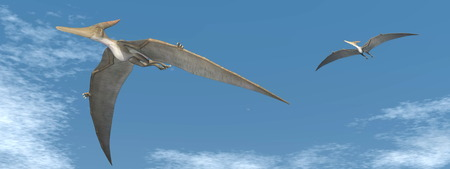 pteranodon: Two pteranodon dinosaurs flying in the sky Stock Photo