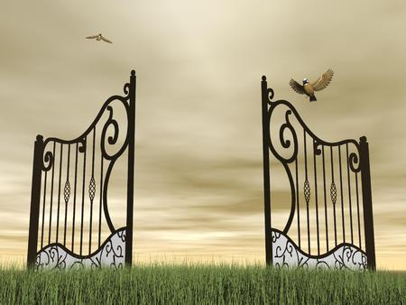 One vintage black open gate in nature with two birds flying around by brown cloudy day photo
