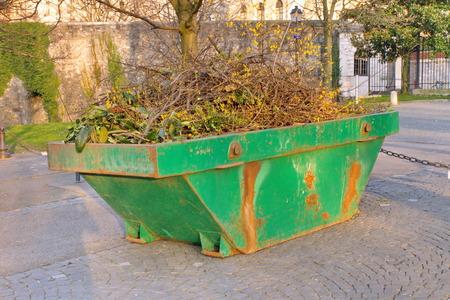 公園内の舗装に木の枝が付いている容器をスキップします。