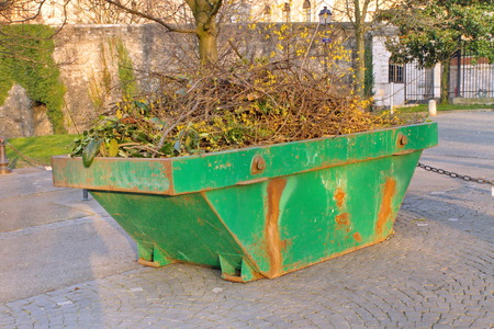 skip: Skip container with tree branches on pavement in a park