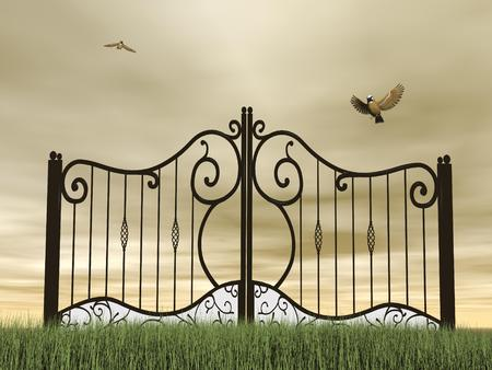 iron gate: One vintage black closed gate in nature with two birds flying around by brown cloudy day
