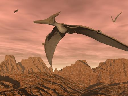 Three pteranodon dinosaurs flying upon rocky landscape by sunset light