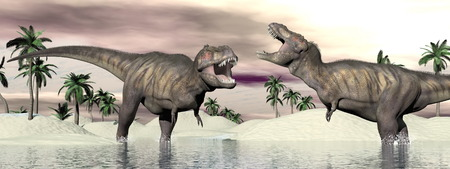 Two tyrannosaurus rex dinosaurs fighting into the water in desertic landscape