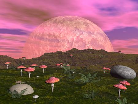Fantasy landscape with red mushrooms, fern, stone and moon photo