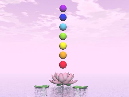 chakra energy: Colorful spheres for chakras upon beautiful lily flower by pink day