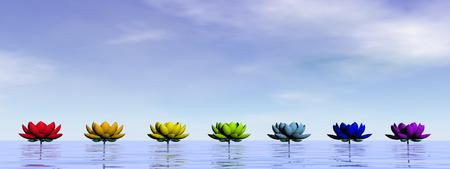 Lily flowers with chakra colors upon water by day sky photo