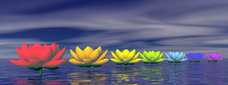 chakra energy: Lily flowers with chakra colors upon water by night Stock Photo