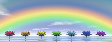Colorful lily flowers for chakras upon water by day with rainbow photo