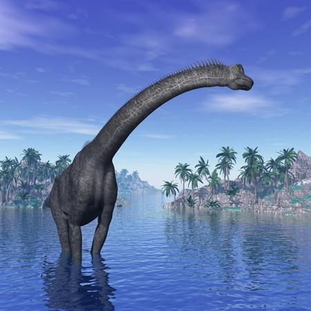 brachiosaurus: Brachiosaurus dinosaur in water next to islands with palm trees by beautiful day Stock Photo