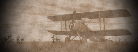 Vintage biplane standing on the green grass with flowers by pink sunset Standard-Bild