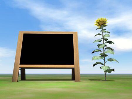 annoucement: Sunflower blackboard - 3D render