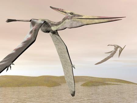 pteranodon: Pteranodon flying - 3D render