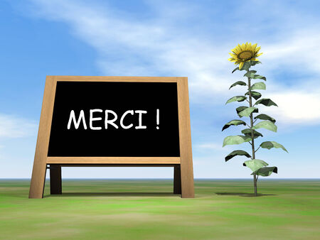 annoucement: Sunflower blackboard saying thank you in french - 3D render Stock Photo