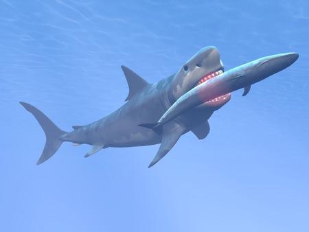 ballena azul: Megalodon tibur�n come ballena azul - render 3D