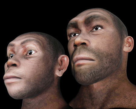 Male and female homo eretus - 3D render photo