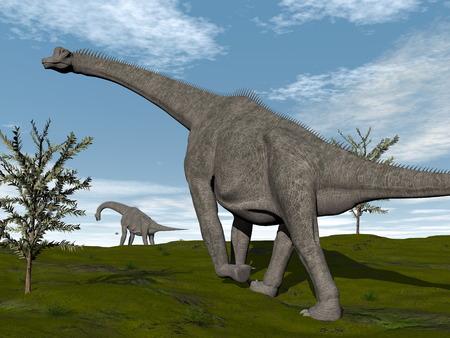 brachiosaurus: Brachiosaurus dinosaurs walk - 3D render Stock Photo